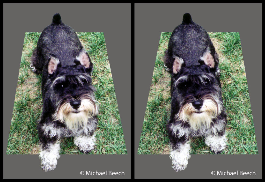 Parallel View